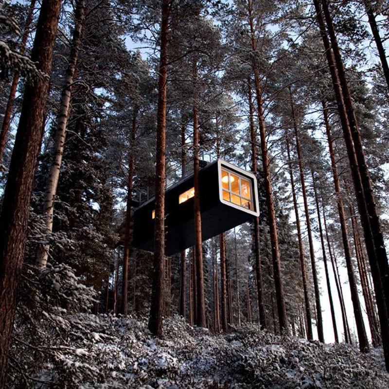 Treehotel 1000 kr